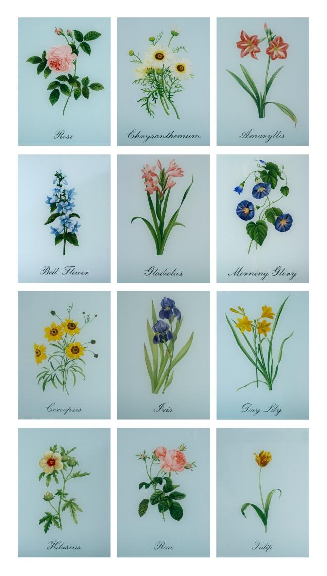 Eglomise Botanicals 2 wpl